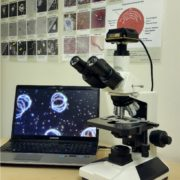 Microscope for Live Blood Analysis